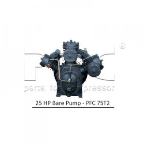 25 HP Bare Pump - PFC 75T2
