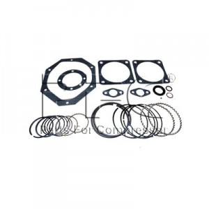 Ring - Gasket Kit 32198400 Replacement